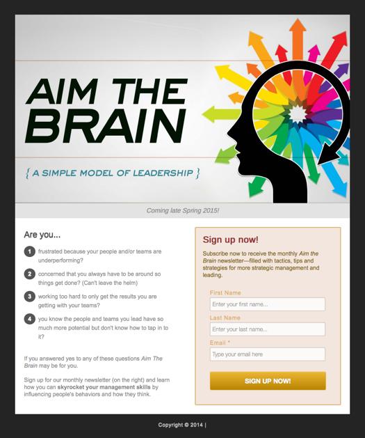 Aim The Brain Responsive Mini-Site