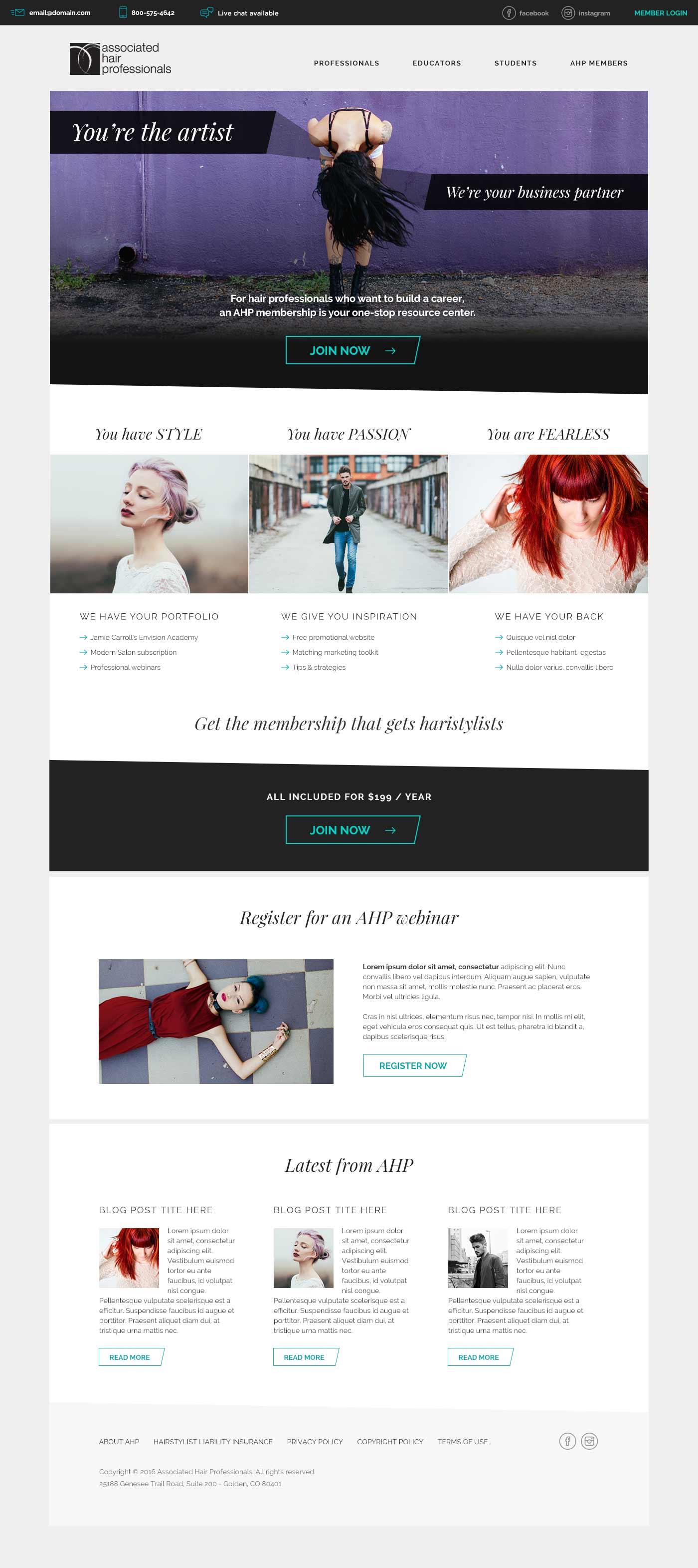 Associated Hair Professionals homepage website design